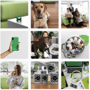 9 Images with green and white to create a cohesive square